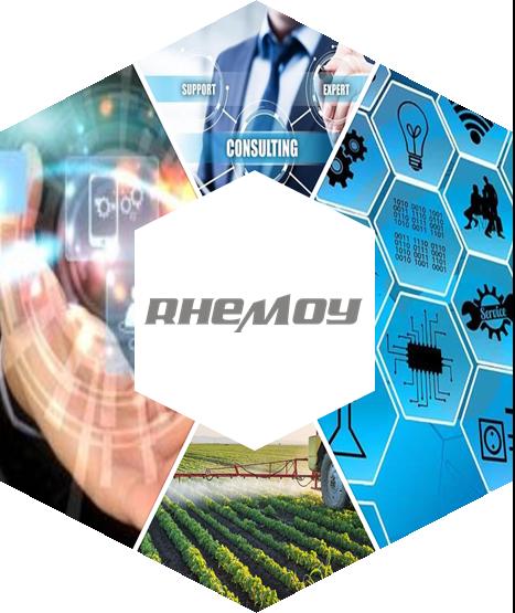 RHEMOY Services Ring Image